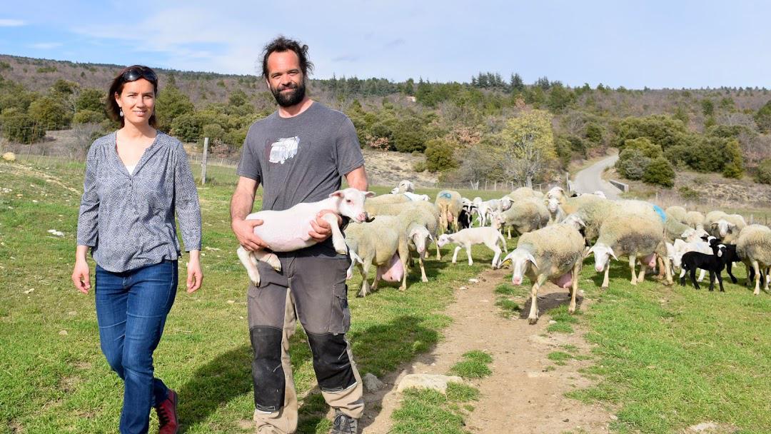 Céline, Florentin et leur troupeau de brebis