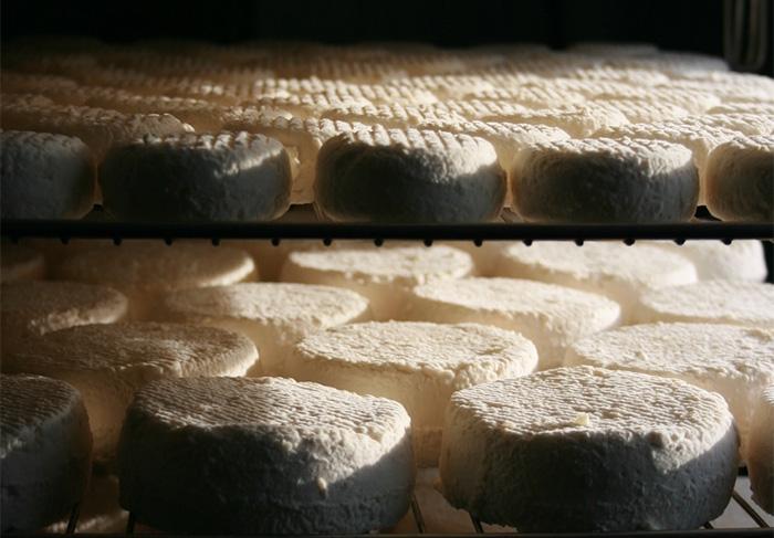 [producteurs agricoles] N° 1: fromagerie des Gipières