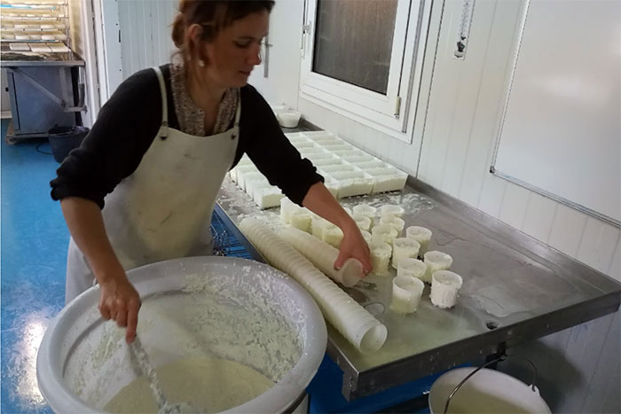 Fabrication du fromage: le moulage